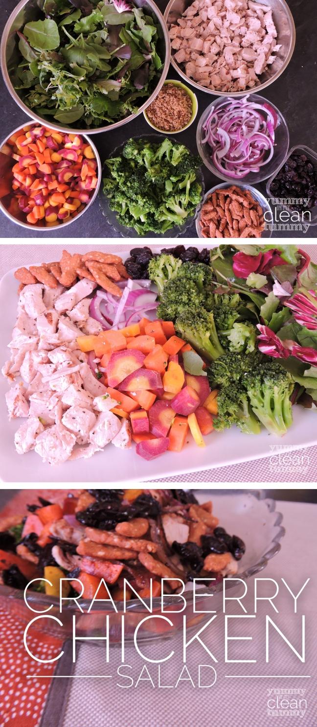 My version of Lean Cuisine's Cranberry Chicken Salad | Organic, Paleo & Gluten Free | yummyinmycleantummy.com